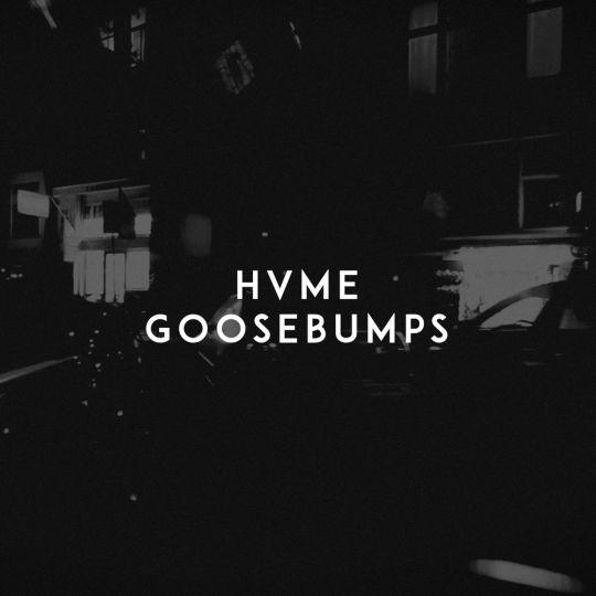 Coverafbeelding Hvme - Goosebumps