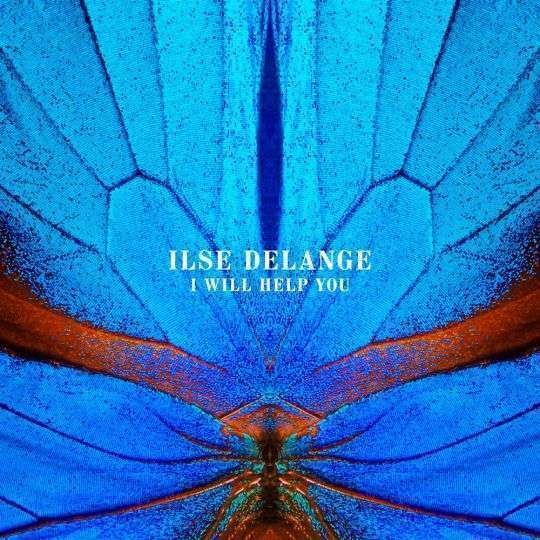 Coverafbeelding I Will Help You - Ilse Delange