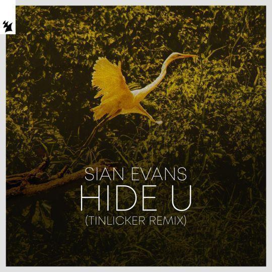 Coverafbeelding Sian Evans - Hide U - Tinlicker Remix