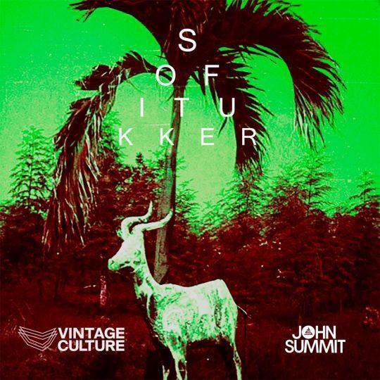 Coverafbeelding Sofi Tukker & Vintage Culture & John Summit - Drinkee - Vintage Culture & John Summi