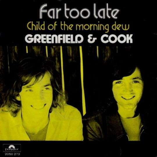Coverafbeelding Far Too Late - Greenfield & Cook
