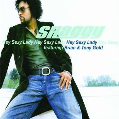 Coverafbeelding Hey Sexy Lady - Shaggy Featuring Brian & Tony Gold