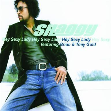 Coverafbeelding Shaggy featuring Brian & Tony Gold - Hey Sexy Lady