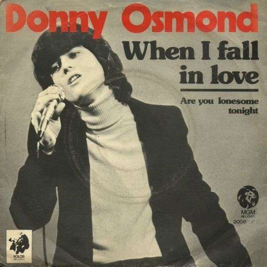 Coverafbeelding When I Fall In Love - Donny Osmond