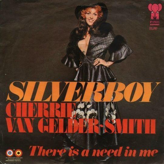 Coverafbeelding Cherrie Van Gelder-Smith - Silverboy