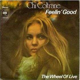 Coverafbeelding Feelin' Good - Chi Coltrane