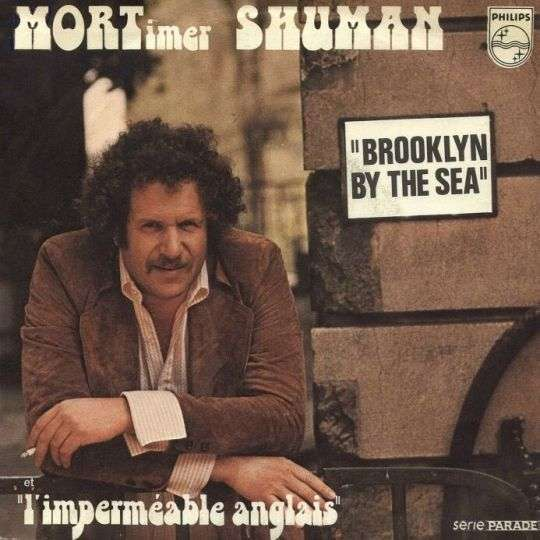 Coverafbeelding Brooklyn By The Sea - Mortimer Shuman