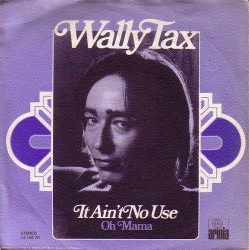 Coverafbeelding It Ain't No Use - Wally Tax