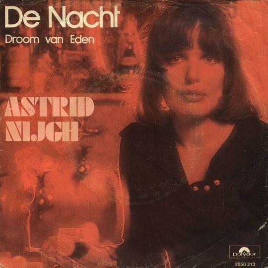 Coverafbeelding De Nacht - Astrid Nijgh