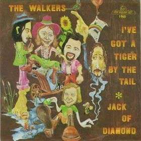 Coverafbeelding Jack Of Diamond - The Walkers