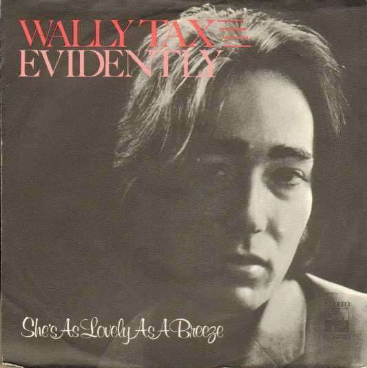 Coverafbeelding Wally Tax - Evidently