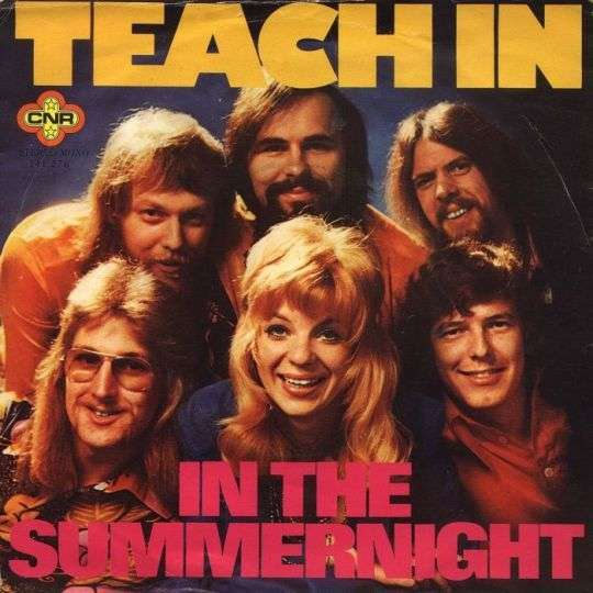 Coverafbeelding In The Summernight - Teach In