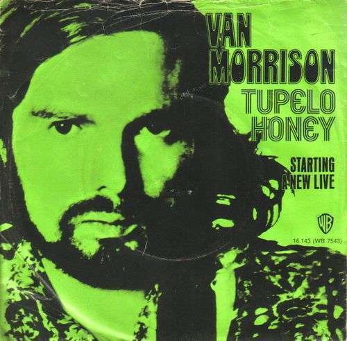Coverafbeelding Tupelo Honey - Van Morrison