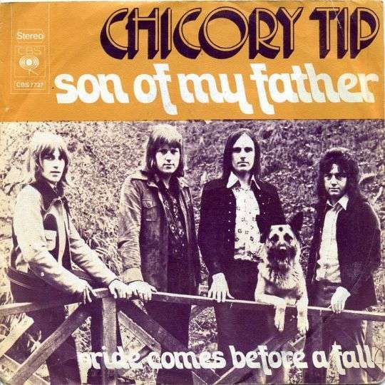 Coverafbeelding Chicory Tip - Son Of My Father