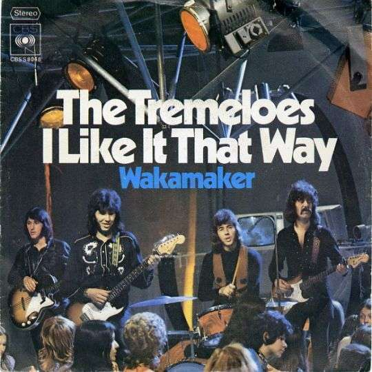 Coverafbeelding I Like It That Way - The Tremeloes