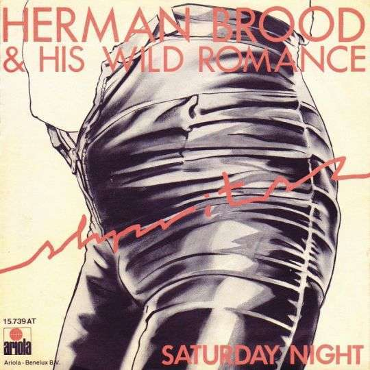 Coverafbeelding Saturday Night - Herman Brood & His Wild Romance