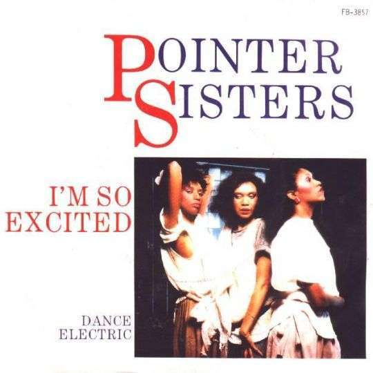 Coverafbeelding Pointer Sisters - I'm So Excited