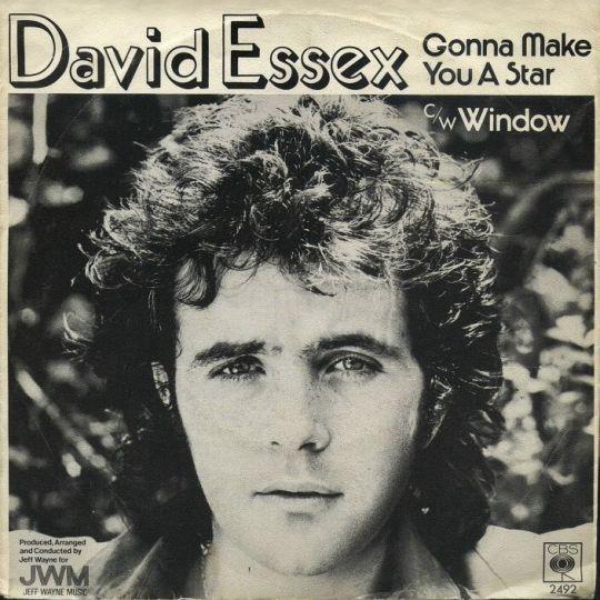 Coverafbeelding Gonna Make You A Star - David Essex