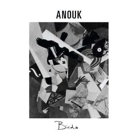 Coverafbeelding Birds - Anouk