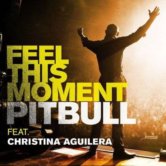 Coverafbeelding Feel This Moment - Pitbull Feat. Christina Aguilera