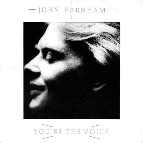 Coverafbeelding You're The Voice - John Farnham