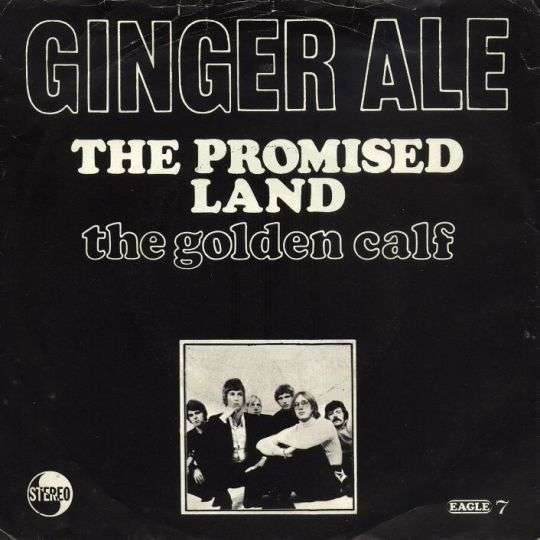 Coverafbeelding The Promised Land - Ginger Ale
