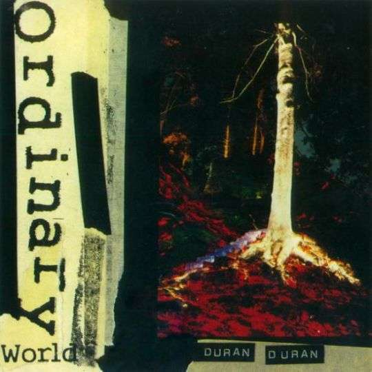 Coverafbeelding Ordinary World - Duran Duran