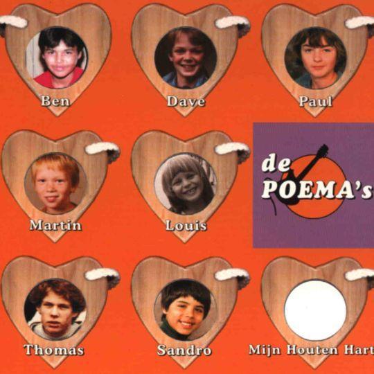 Coverafbeelding Mijn Houten Hart - De Poema's