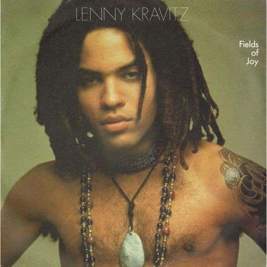 Coverafbeelding Fields Of Joy - Lenny Kravitz