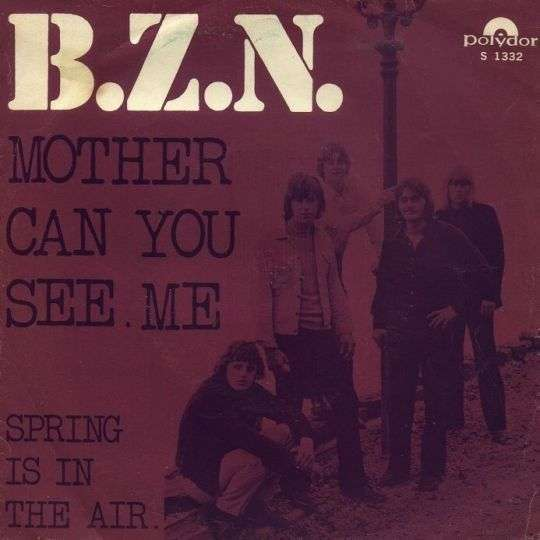 Coverafbeelding Mother Can You See Me - B.z.n.