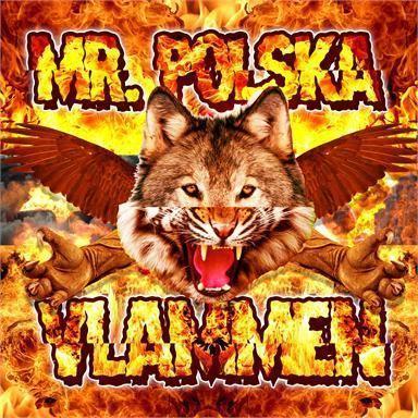 Coverafbeelding Vlammen - Mr. Polska