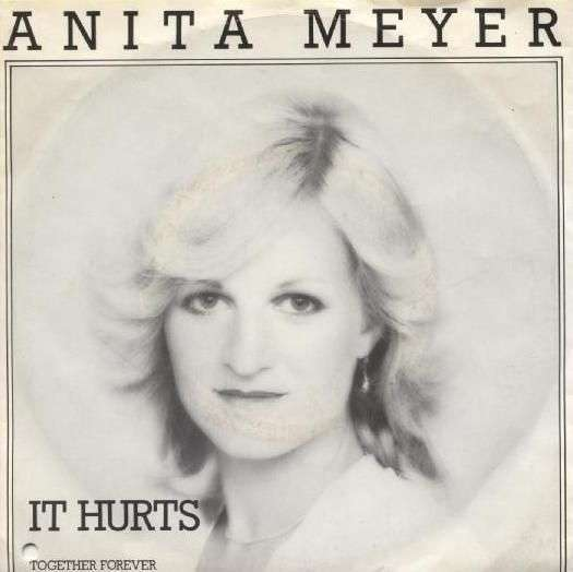 Coverafbeelding Anita Meyer - It Hurts