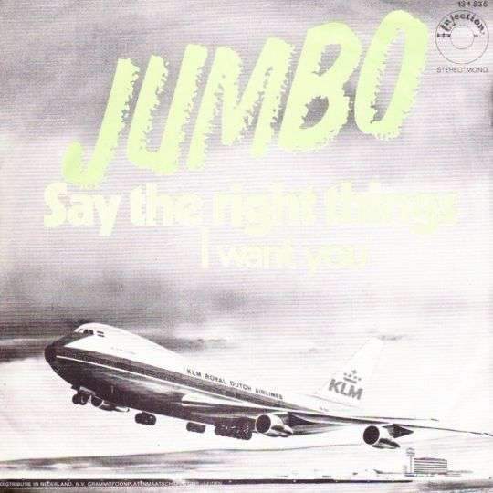 Coverafbeelding Say The Right Things - Jumbo