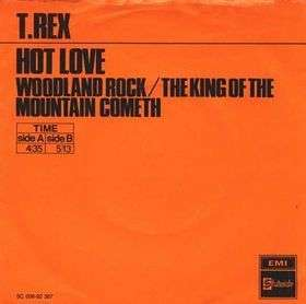 Coverafbeelding Hot Love - T.rex