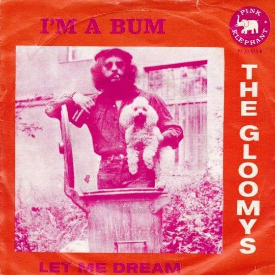 Coverafbeelding The Gloomys - I'm A Bum