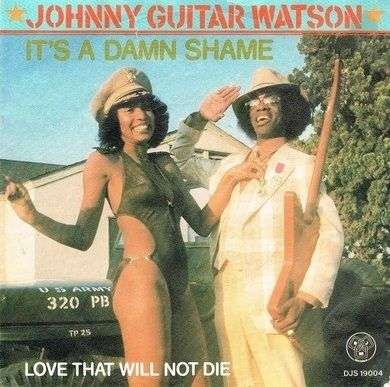 Coverafbeelding Johnny Guitar Watson - It's A Damn Shame