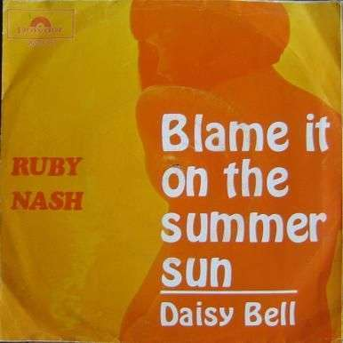 Coverafbeelding Blame It On The Summer Sun - Ruby Nash