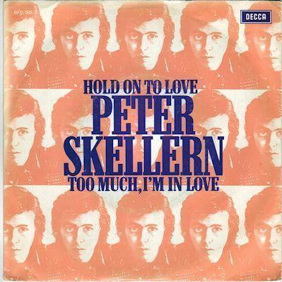 Coverafbeelding Hold On To Love - Peter Skellern