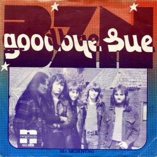 Coverafbeelding Goodbye Sue - Bzn