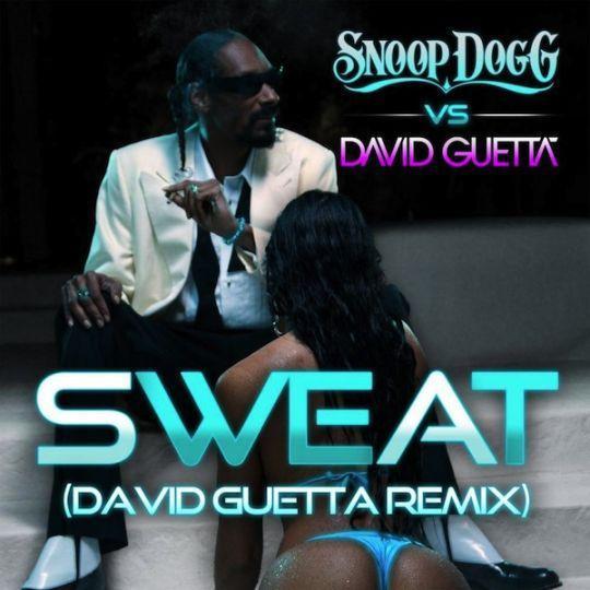 Coverafbeelding Snoop Dogg vs David Guetta - Sweat (David Guetta Remix)