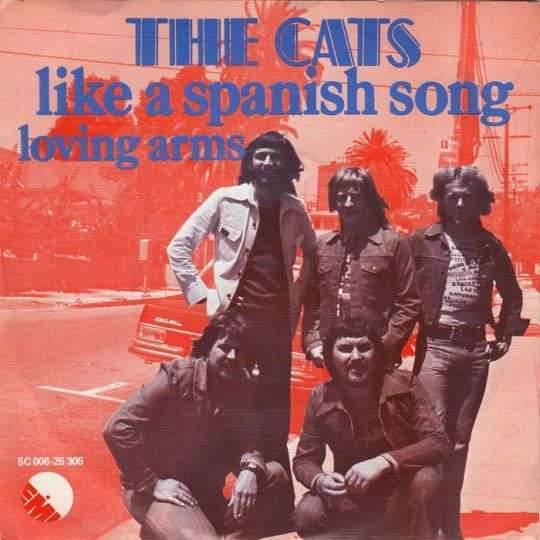 Coverafbeelding Like A Spanish Song - The Cats