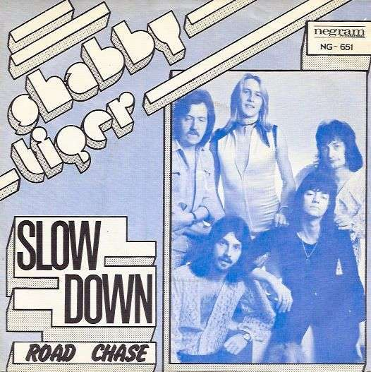 Coverafbeelding Shabby Tiger - Slow Down