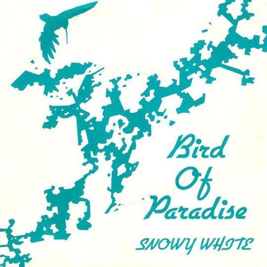 Coverafbeelding Snowy White - Bird Of Paradise