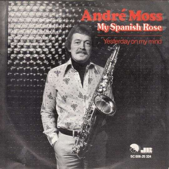 Coverafbeelding My Spanish Rose - André Moss