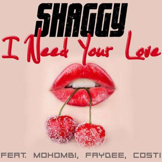 Coverafbeelding I Need Your Love - Shaggy Feat. Mohombi, Faydee, Costi