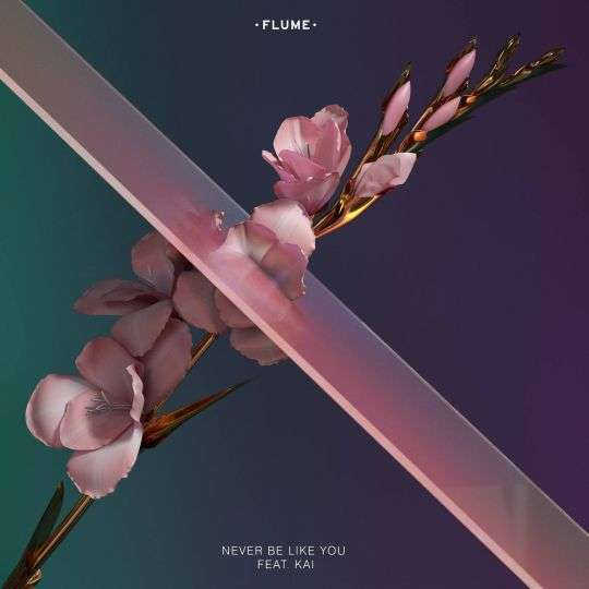 Coverafbeelding Flume feat. Kai - Never be like you