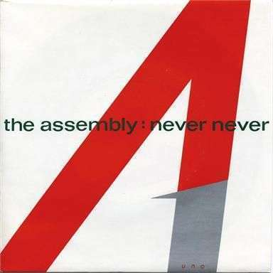 Coverafbeelding The Assembly - Never Never