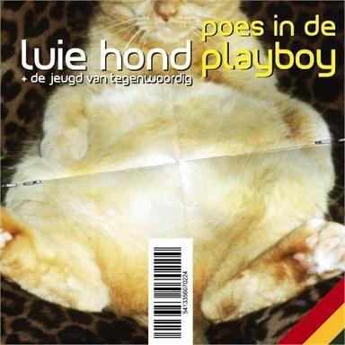 Coverafbeelding Poes In De Playboy - Luie Hond + De Jeugd Van Tegenwoordig